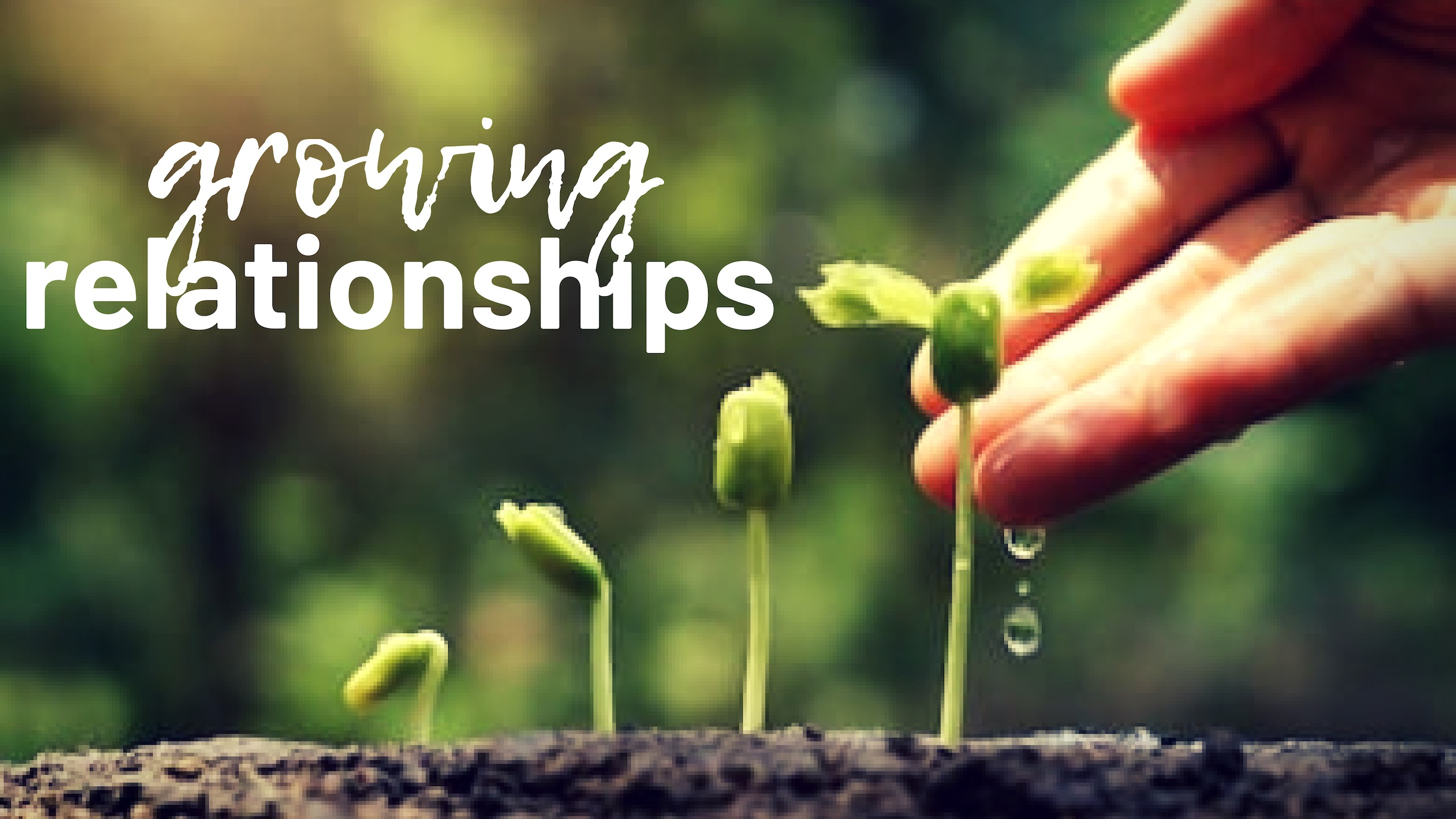 Growing Relationships